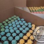 Colorful Mini Cupcakes
